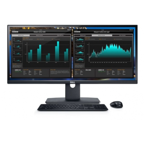 Monitor DELL U2913WM (5397063213771)